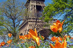 Der Eiffelturm im Frühling © Jasantiso (iStockphoto.com)